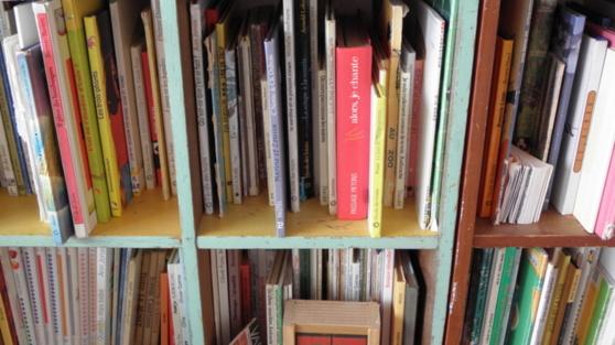 bibliothèque idéale: auto-satisfaction