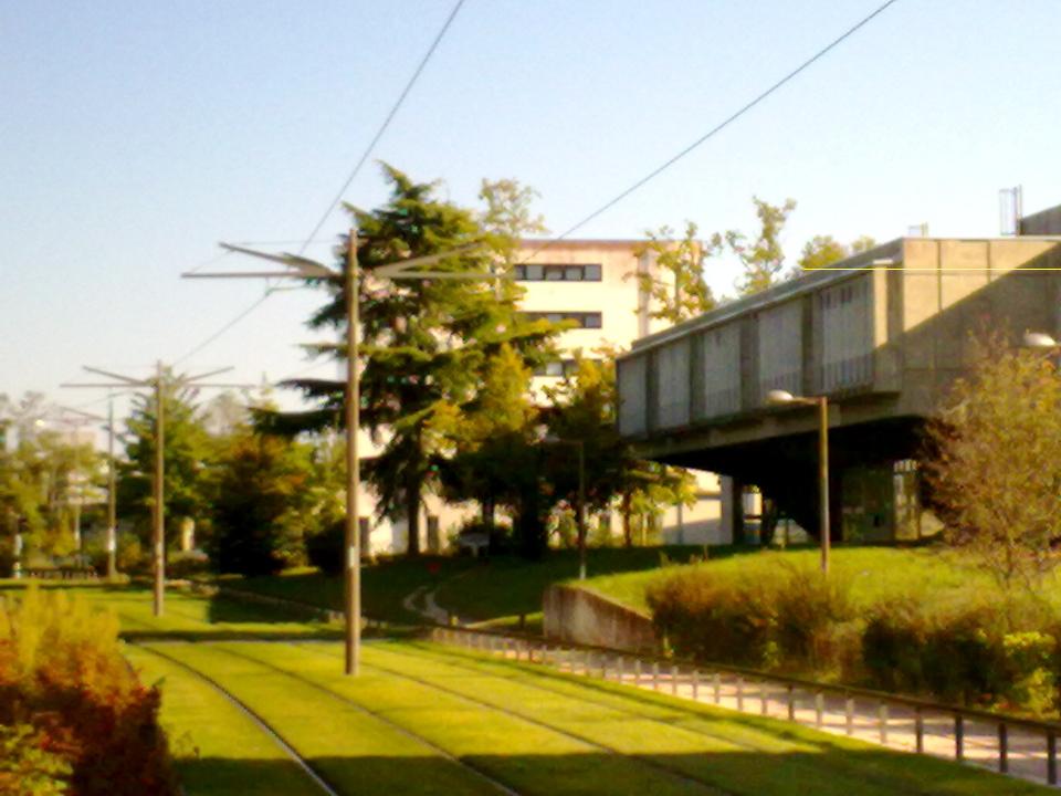 orléans la source: l'université
