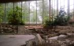 orléans la source: le parc floral