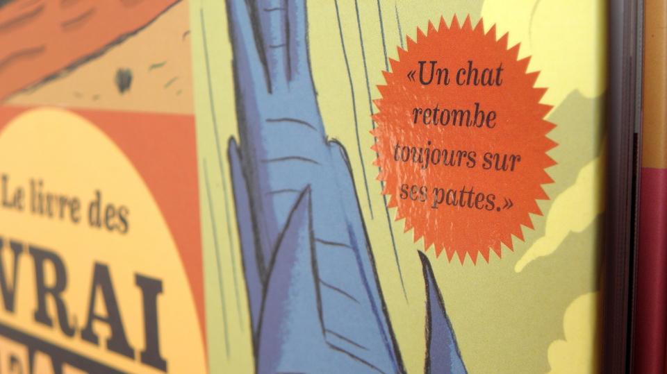 La Martinière . Le Livre des Vrai / Faux